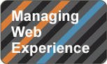 Managing Web Experience