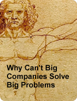 Why Can't Big Companies Solve Big Problems